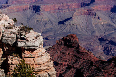 Poster featuring the photograph Grand Canyon 3 by Donna Corless