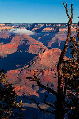 Poster featuring the photograph Grand Canyon 30 by Donna Corless