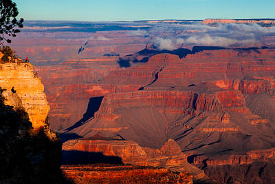 Poster featuring the photograph Grand Canyon 32 by Donna Corless