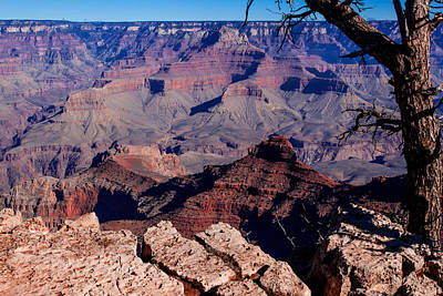 Poster featuring the photograph Grand Canyon 7 by Donna Corless