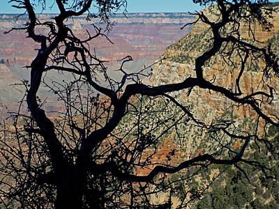 Grand Canyon 8 Poster