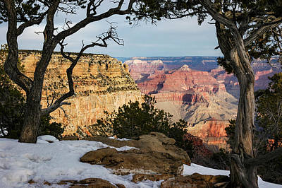 Grand Canyon At Sunrise Poster by Mary Lee Dereske