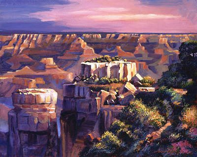 Grand Canyon Morning Poster by David Lloyd Glover