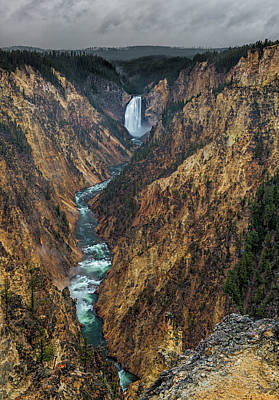 Grand Canyon Of The Yellowstone Poster by Loree Johnson