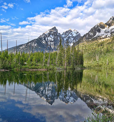 Grand Teton National Park Reflections Poster