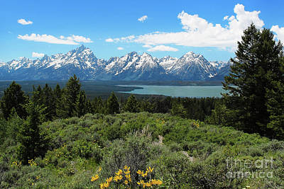 Poster featuring the photograph Grand Tetons by Jemmy Archer