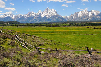 Grand Tetons With Buck And Pole Fence Poster by Alan Lenk