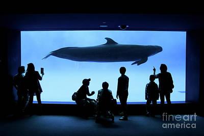 Grand Whale Poster by Tatsuya Atarashi