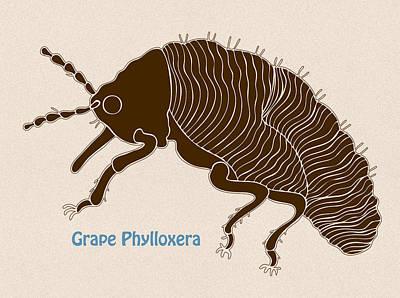 Grape Phylloxera Poster by Frank Tschakert