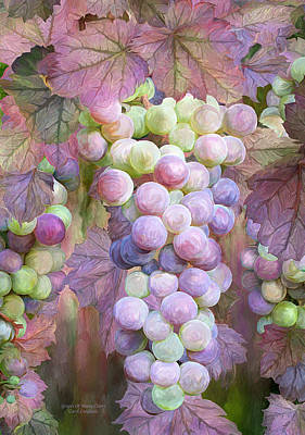 Grapes Of Many Colors Poster by Carol Cavalaris