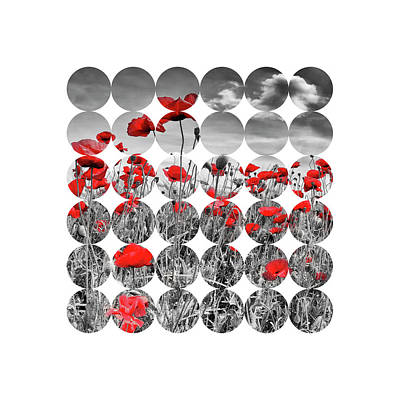 Graphic Art Poppies Poster by Melanie Viola
