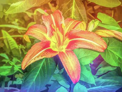 Graphic Rainbow Orange Lily Poster