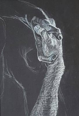 Grasping Hands Poster by Sara M Jukes