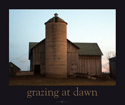 Grazing At Dawn Poster