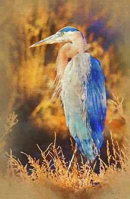 Poster featuring the photograph Great Blue Heron by Bellesouth Studio