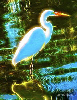 Great White Egret  Poster by Jerome Stumphauzer