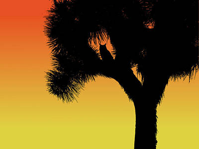 Great Horned Owl In A Joshua Tree Silhouette At Sunset Poster