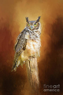 Great Horned Owl In Autumn Poster