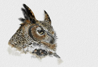 Great Horned Owl Poster by Kathie Miller