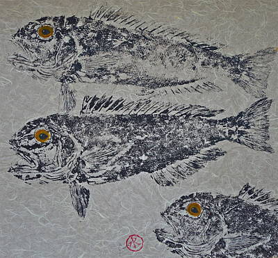 Great Northern Tilefish - Golden Tilefish 2 Poster