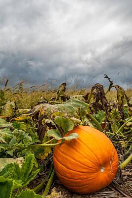 Great Pumpkin Off Center Poster by Wayne King