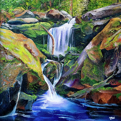 Great Smoky Waterfall Poster
