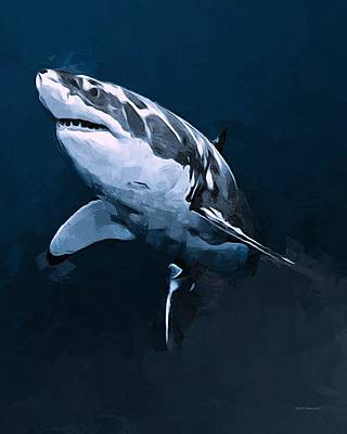 Great White Shark Poster by Scott Wallace
