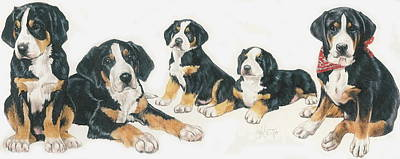 Greater Swiss Mountain Puppies Poster