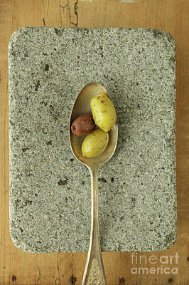 Greek Olives Poster by Edward Fielding