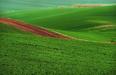 Green Abstract Of Farmland Poster by Jenny Rainbow