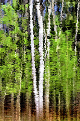 Green Abstract Tree Reflection Poster