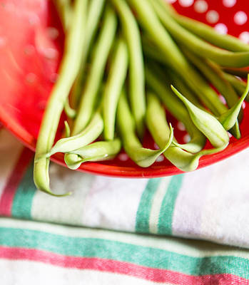 Green Beans Poster by Rebecca Cozart