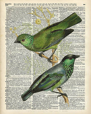 Green Canary Birds Couple Over Vintage Dictionary Book Page Poster