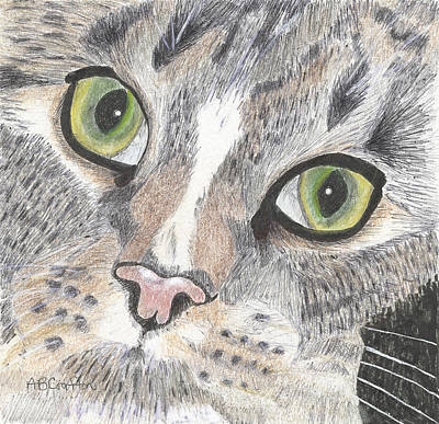 Poster featuring the drawing Green Eyes by Arlene Crafton