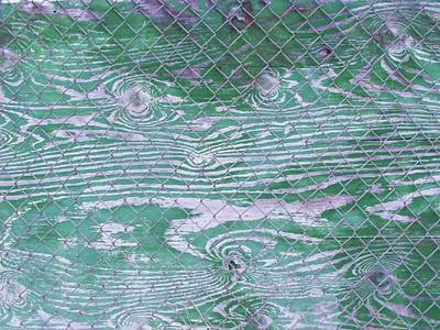 Green Fence Poster by Anna Villarreal Garbis