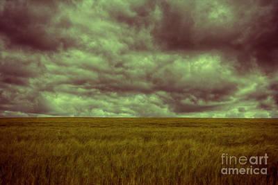 Green Fields 3 Poster by Douglas Barnard