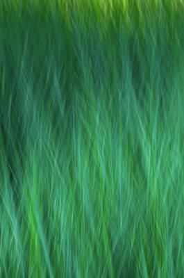 Green Fire 1 Poster