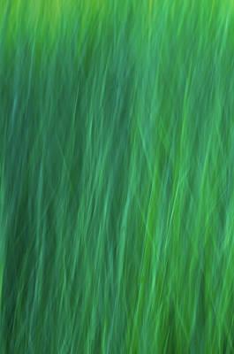 Green Fire 6 Poster