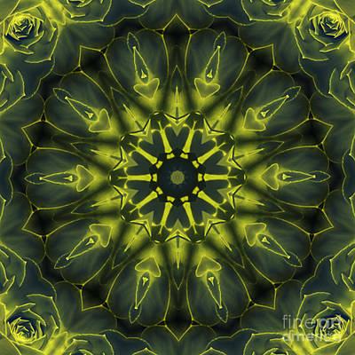 Succulent Mandala Poster