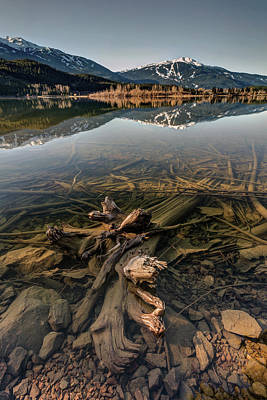 Poster featuring the photograph Green Lake Ironwood by Pierre Leclerc Photography