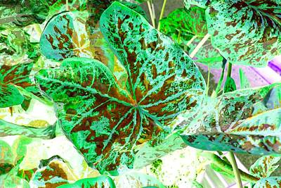 Poster featuring the photograph Green Leafmania 1 by Marianne Dow