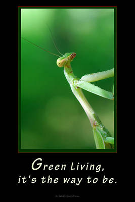 Green Living Poster