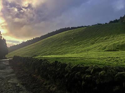 Green Pasture At Sunset Poster