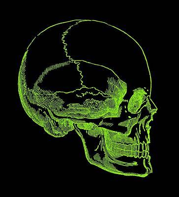 Poster featuring the digital art Green Skull by Jennifer Hotai