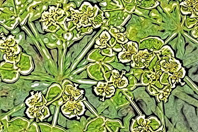 Green Spurge 1 Poster