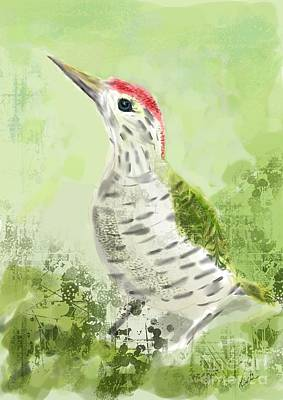 Green Woodpecker Poster