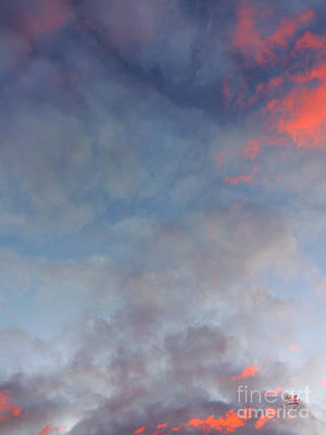 Pink Flecked Sky Poster by Linda Hollis