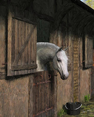Grey Horse In The Stable - Waiting For Dinner Poster