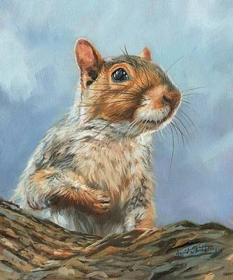 Poster featuring the painting Grey Squirrel by David Stribbling