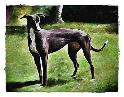 Greyhound Oneco Marie Poster